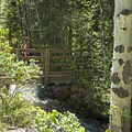 A bridge over the creek.- Bells Canyon Lower Falls