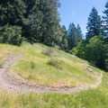 A switchback on the Cloverpatch Trail.- Cloverpatch Trail Hike
