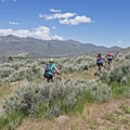 Navigating the vast scrubland common to the Colorado Plateau.- Coyote Canyon Trails: Coyote Trailhead