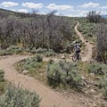 The trail is not very technical, but it has a few fun spots to test your agility.- Coyote Canyon Trails: Coyote Trailhead