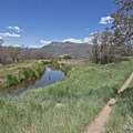 A pond along the path.- Coyote Canyon Trails: Coyote Trailhead