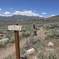 Free Fall Trail.- Coyote Canyon Trails: Coyote Trailhead