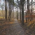 One of many hiking trails in the park.- Mammoth Cave National Park