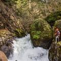 Pumpkin Spice, a Class V rapid above Thomas Creek Falls.- Upper Thomas Creek: Pumpkin Patch to Thomas Creek Falls