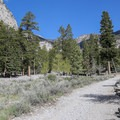 The first part of the trail passes a former campground that was destroyed in a flash flood and never rebuilt.- Big Falls in the Spring Mountains