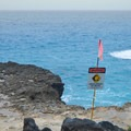 Swimming here can be dangerous due to strong surges and currents.- Ka'ena Point Trail
