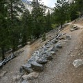 Switchbacks make up the final near-mile to the falls.- Mary Jane Falls
