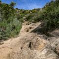 Slick rock makes up a portion of the trail.- Bishop Peak via Foothill Boulevard