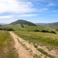 Increasingly wide views of the San Luis Obispo foothills as you gain elevation.- Bishop Peak via Foothill Boulevard