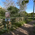 The trailhead begins by jogging along a fence.- Bishop Peak via Highland Drive