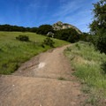 The climb from the Patricia Drive Trailhead.- Bishop Peak via Highland Drive