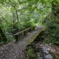 The foot trail to the falls goes through a lush canyon along Hitchcock Canyon Creek.- Fern Falls via Kahn Ranch