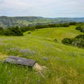 Scenic benches overlooking the valley below.- Fern Falls Hike