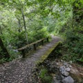 A foot bridge adds to the scenic feeling of the hike.- Fern Falls Hike