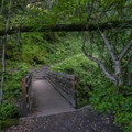 A footbridge adds to the scenic feeling of the Waterfall Trail.- Waterfall Trail