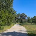 The Lupine Loop Trail begins as a ramble across a flat meadow.- Lupine Loop Trail