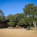 The Garland Ranch Visitor Center with benches, interpretive signs, and bathrooms.- Lupine Loop Trail
