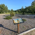 A short interpretive nature trail near the visitor center.- Garland Ranch Regional Park