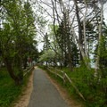 The short path to the beach access.- Sand Beach