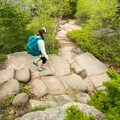 Many stone steps have been carved along the trail.- Gorham Mountain Trail