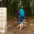 Starting out from the Gorham Mountain Trailhead.- Gorham Mountain Trail