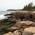 Spectators watching Thunder Hole, Acadia National Park.- Thunder Hole