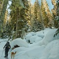 The trail leading to the lakes is well defined and obvious.- Joffre Lakes Provincial Park