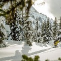 Toward the bottom, the trees are full of deep snow all the way back to the highway.- Joffre Lakes Provincial Park