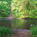 Side trail off of the paved pathway.- Alder Glen Recreation Site