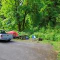 Campsite 8.- Alder Glen Recreation Site