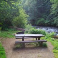 A streamside campsite in Alder Glen Recreation Site.- Alder Glen Recreation Site