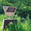 Roadside sign marking the recreation site.- Alder Glen Recreation Site