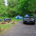 Typical campsite in Alder Glen Recreation Site.- Alder Glen Recreation Site