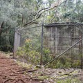 The trail starts by passing this water storage tank.- 'Aiea Loop Trail