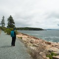 Looking out toward Sand Beach.- Ocean Path