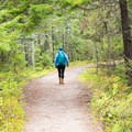 The trail is relatively isolated compared to other adventures in Acadia.- Wonderland Trail