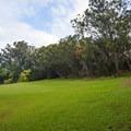 Wide open greenspaces.- Keaīwa Heiau State Recreation Area