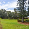 There is plenty of room to roam.- Keaīwa Heiau State Recreation Area