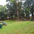 One of the ten available camping sites.- Keaīwa Heiau State Recreation Area