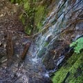 A waterfall runs over the trail.- Packwood Lake