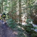There is still some snow along the trail.- Packwood Lake