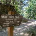 A sign for Whisky Creek Cabin along the Rogue River Trail.- Whisky Creek Cabin
