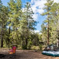 Quiet campsite in Mather Campground.- Mather Campground