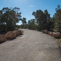 Most of the Rim Trail is paved and ADA accessible.- Rim Trail