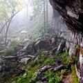 Bluffs located by Rainbow Falls.- Rainbow Falls Trail via LeConte Creek
