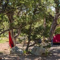 Shade is scarce in many Desert View campsites.- Desert View Campground