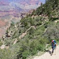 You have to save energy for the way up!- Bright Angel Trail Day Hike