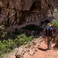 Parts of this trail stay fairly shady.- Bright Angel Trail Day Hike