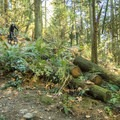 Riding the trails at Burnaby Mountain.- Burnaby Mountain