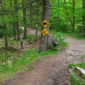 Snowmobile trail leading to the bridge over the river.- Sculptured Rocks Natural Area